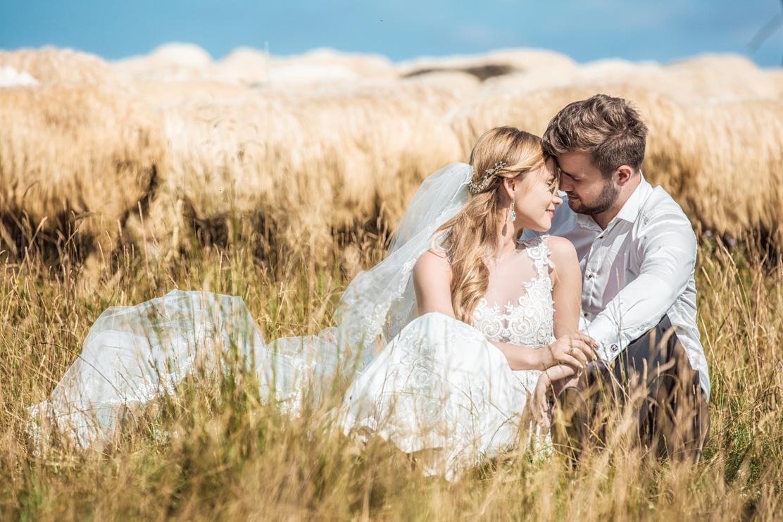 fotografia ślubna i para młoda pośród stada baranków