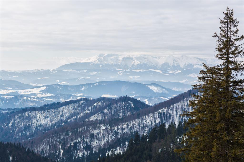 zimowy widok na Tatry z szczytu Przechyba