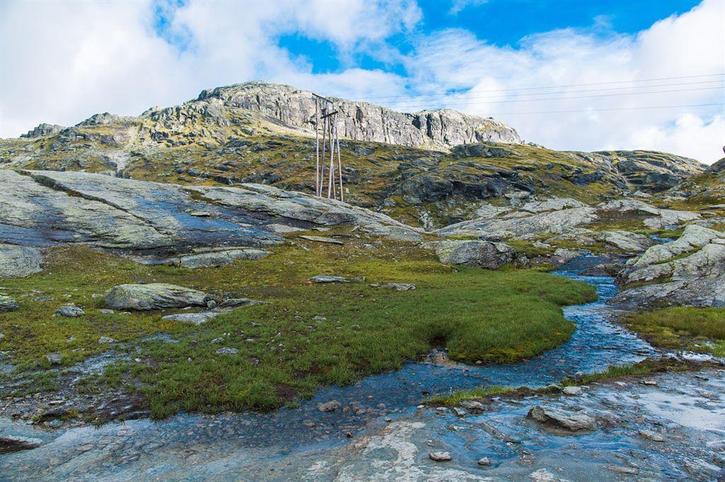 plener ślubny w Norwegii